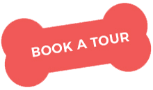 https://hosszubereki.hu/wp-content/uploads/2019/08/book_a_tour.png
